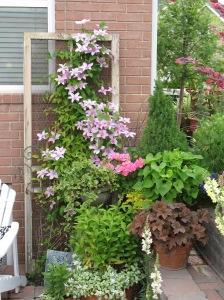 Outdoor room vignette - old screen door with clematis